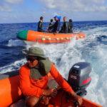 Chase boats in Tubbataha reefs