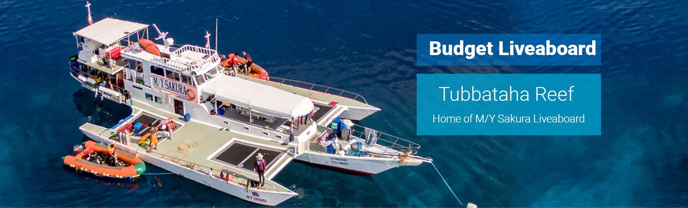 Budget Dive Liveaboard on Tubbataha Reefs